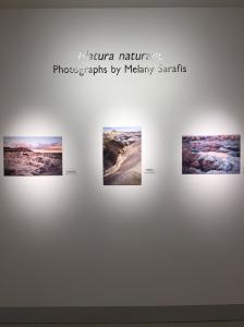 Natura Naturans - Photographs By Melany Sarafis